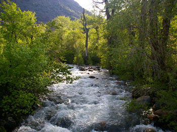 Big Cottonwood Creek