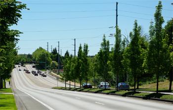 Cornell Road